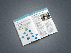 Bray Partnership Annual Report 300x225 - bray-partnership-annual-report