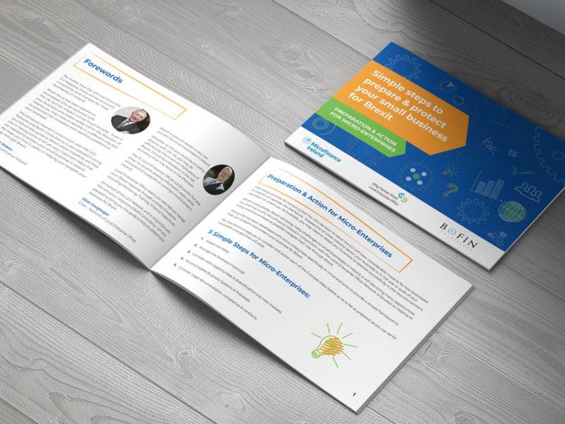 microfinance ireland3 800x600 - Microfinance Ireland Brexit Guide